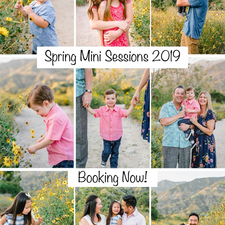 Spring Mini Sessions 2019