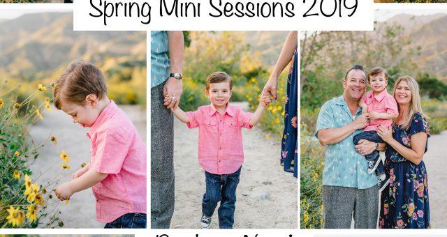 Spring Mini Sessions 2019